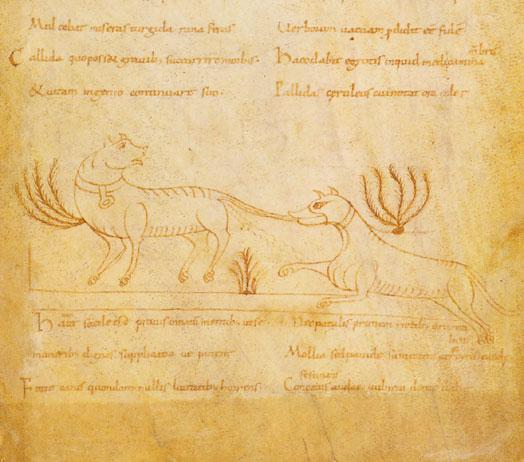 Le Roman de Renart (Illustré) Nal_1132_39