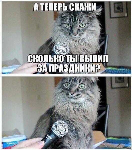 Попкорн (флудильня) - Том IX - Страница 34 Podborka_26