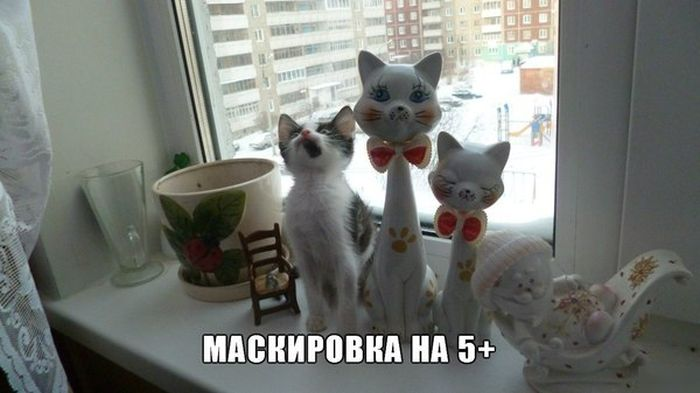 Попкорн (общество, политика) - Том XVII - Страница 3 Podborka_34