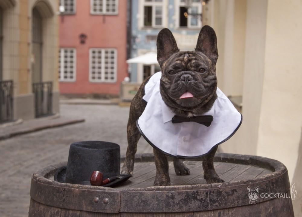 День рождения Шерлока Холмся в г. Риге, Латвии 09.01.2016.г. - Страница 2 2