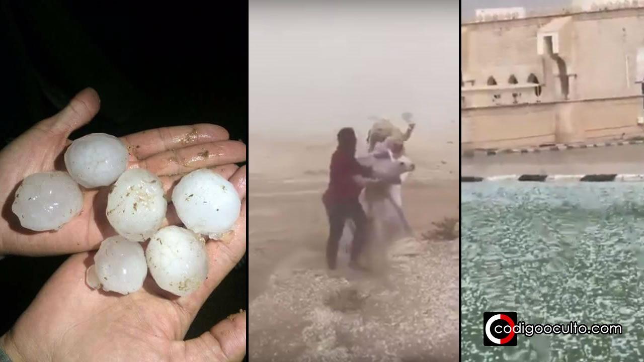 Grandes eventos atmosféricos y desastres naturales - Página 4 Intensas-granizadas-golpean-arabia-saudita-matando-cientos-de-animales-portada-co