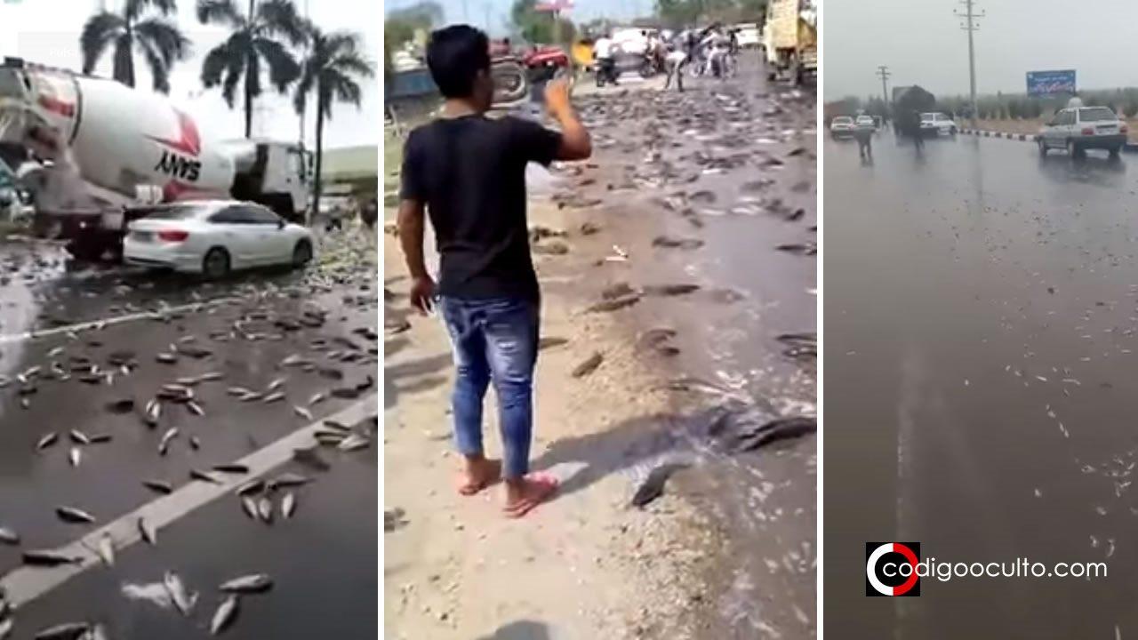 Grandes eventos atmosféricos y desastres naturales - Página 4 Se-registran-lluvias-de-peces-en-iran-china-e-india-portada-codigo-oculto
