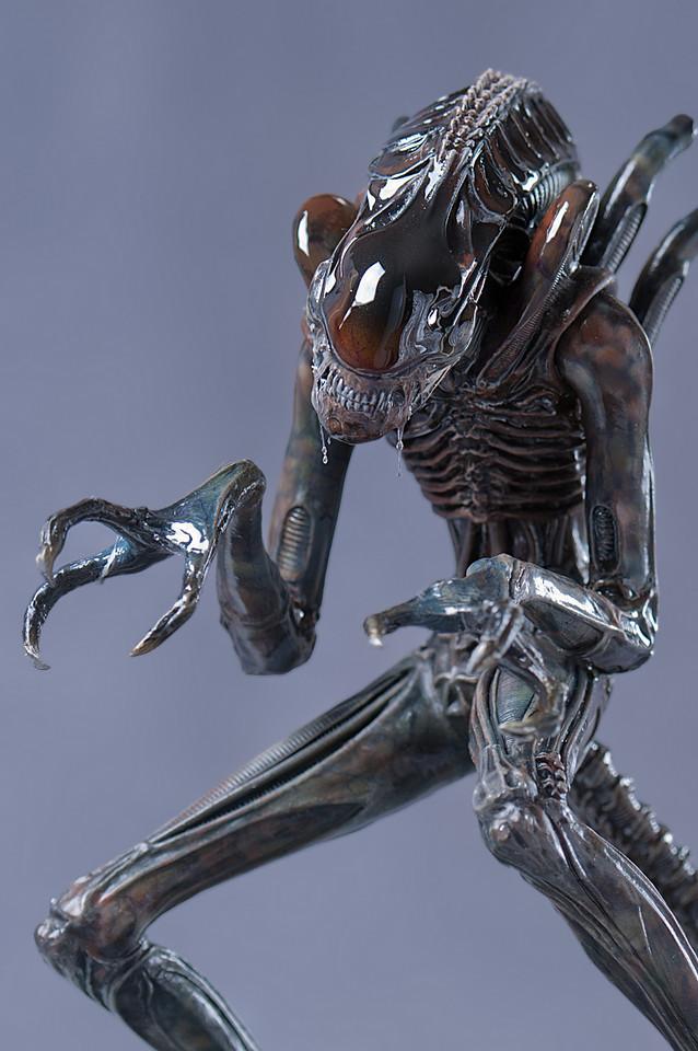 alien par smugmug 1072541074_HeYxT-X2