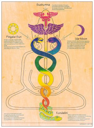 Star Wars, Yin and Yang, Philosophy, and Mythology 29012_nadis