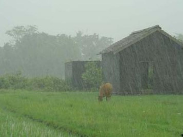 El clima de hoy donde tú vives Lluvia-campo