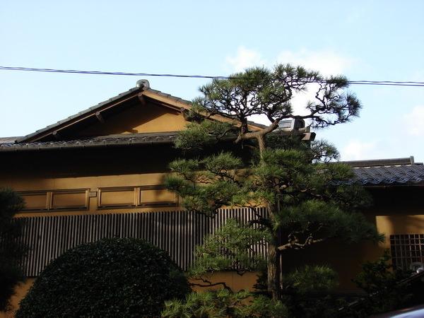 Япония. Исполнение мечты I-1298