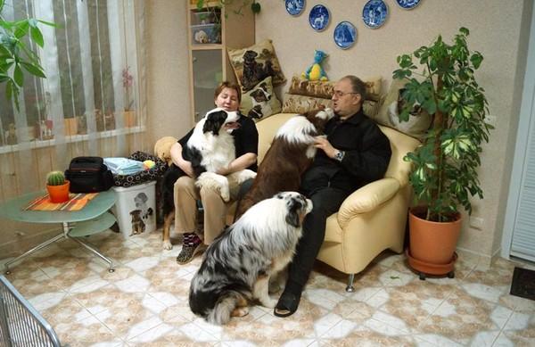 Аусси в Ставрополе H-3059