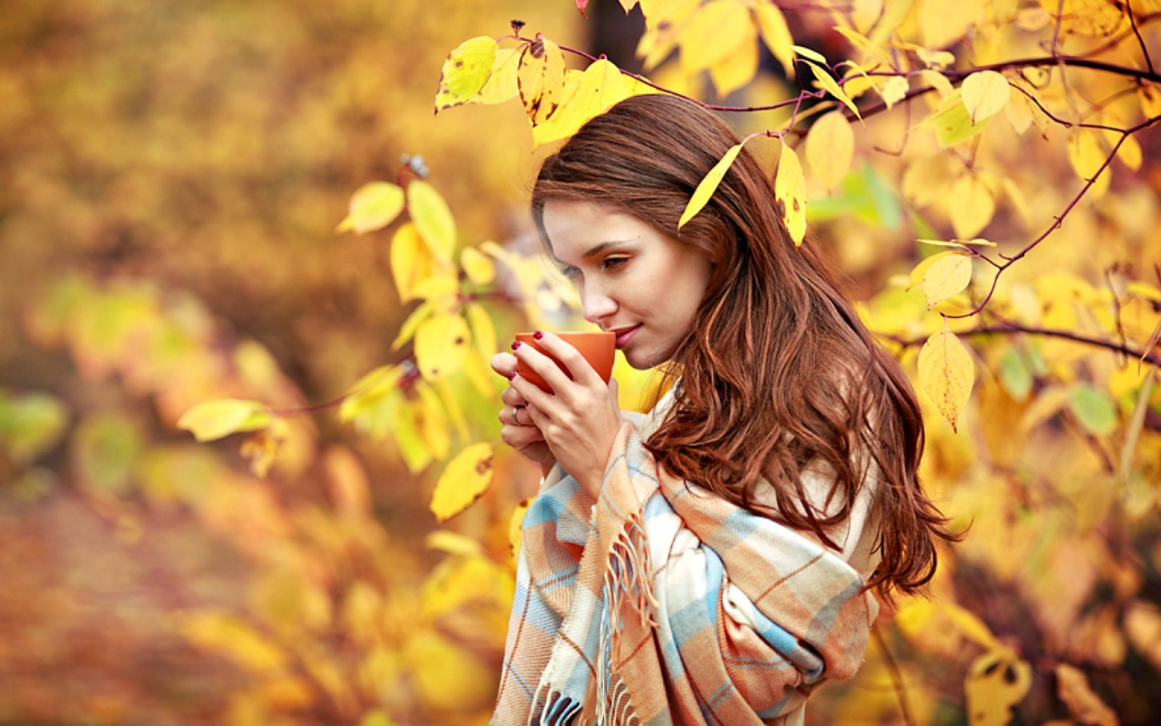 ... Y caen las hojas, llega ....¡¡¡ EL Otoño !!! - Página 3 H-58533