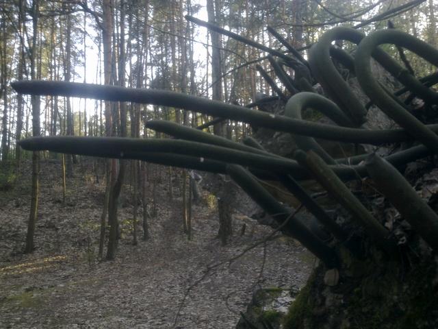 Pasaules un Latvijas apceļošana - vietas kur esam bijuši Att-ls1630.sized