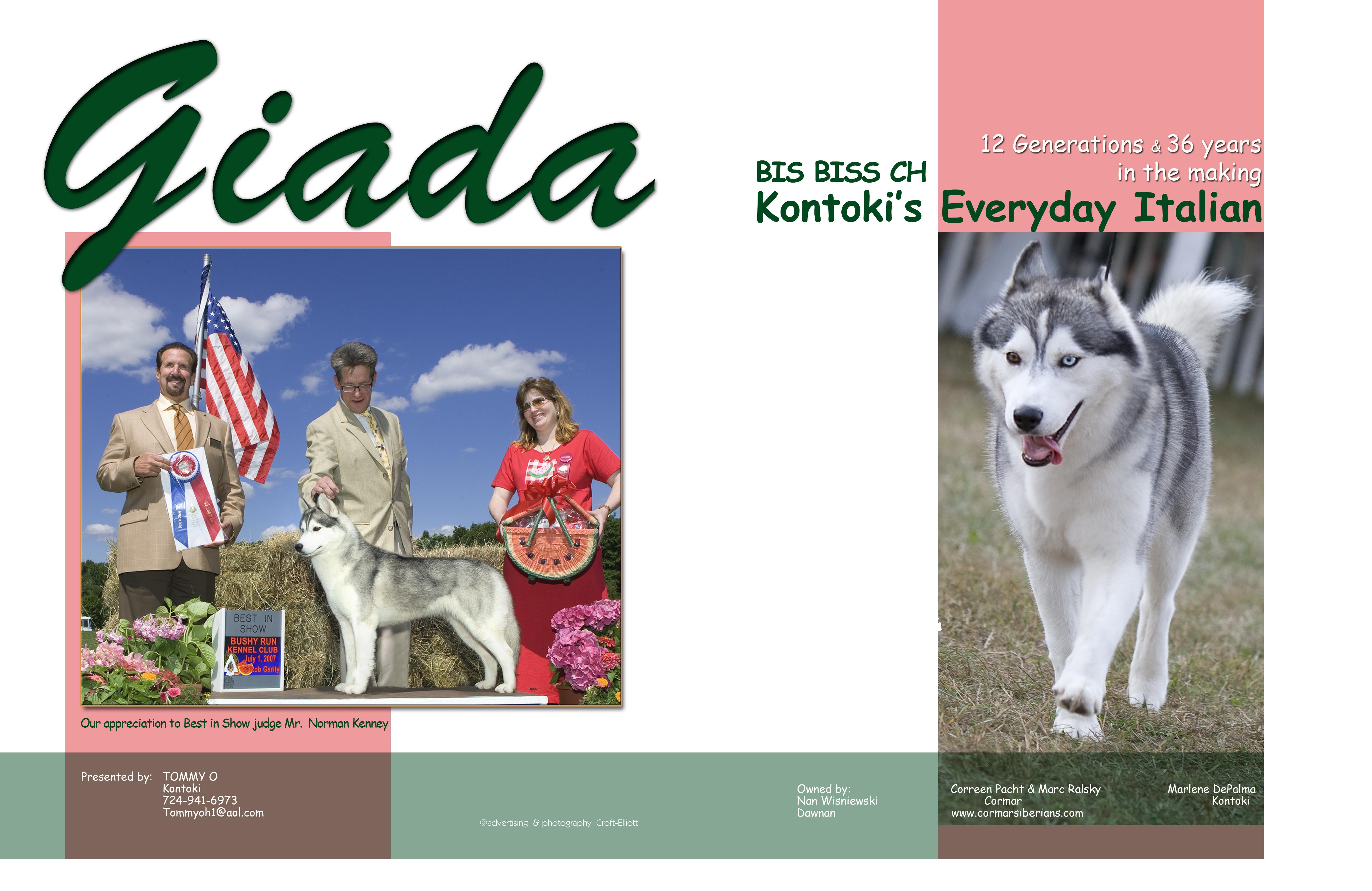Westminster Dog Show PachtgiadasibeWDD112007ac