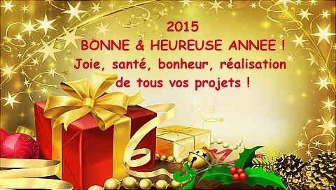 FIN 2014 - Page 2 Bonne-annee-20151