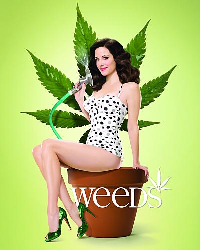 Cannabis Weeds