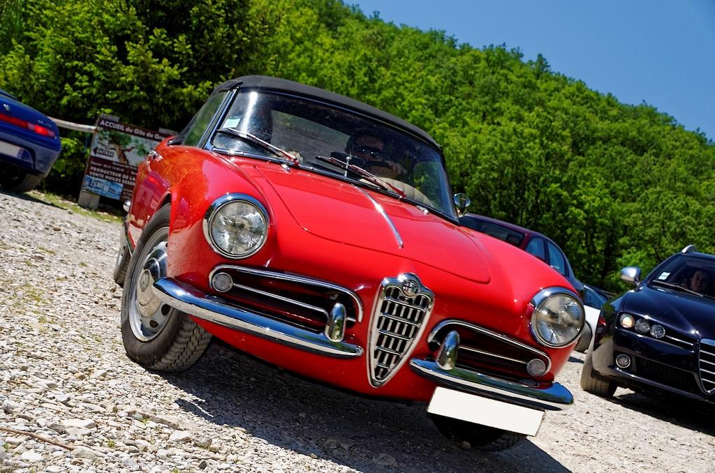 [Alfa Romeo] Giulietta spider _DSC9531