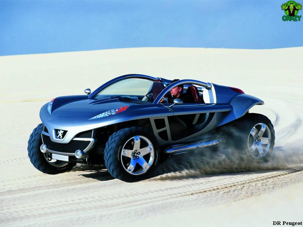 أغرب السيارات Futuristic-car-Peugeot-Hoggar