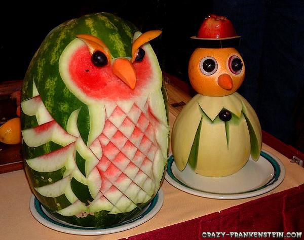 فنانين البطيخ Watermelon-owl-birds