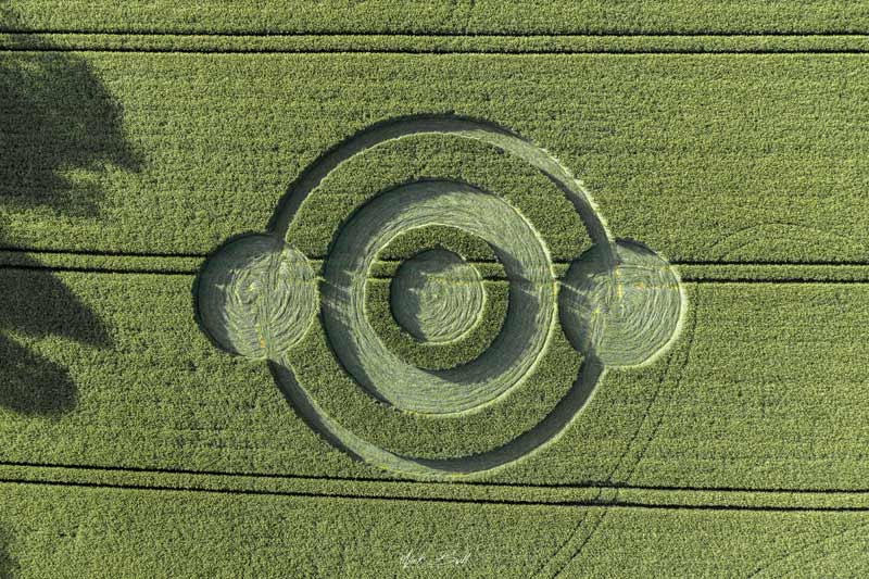 crop circles 2019 - Page 4 DJI0317