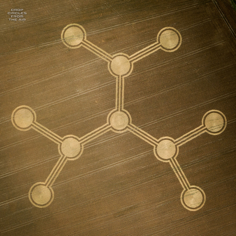 crop circles 2020 - Page 2 Patney1