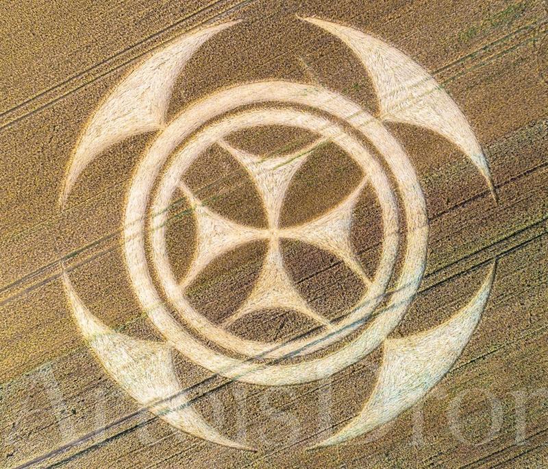 crop circles 2020 - Page 2 Vimy07072020b