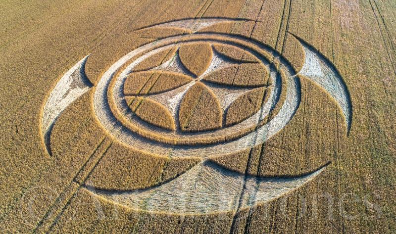 crop circles 2020 - Page 2 Vimy07072020c