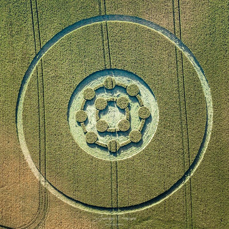 crop circles 2020 - Page 2 DJI_0494