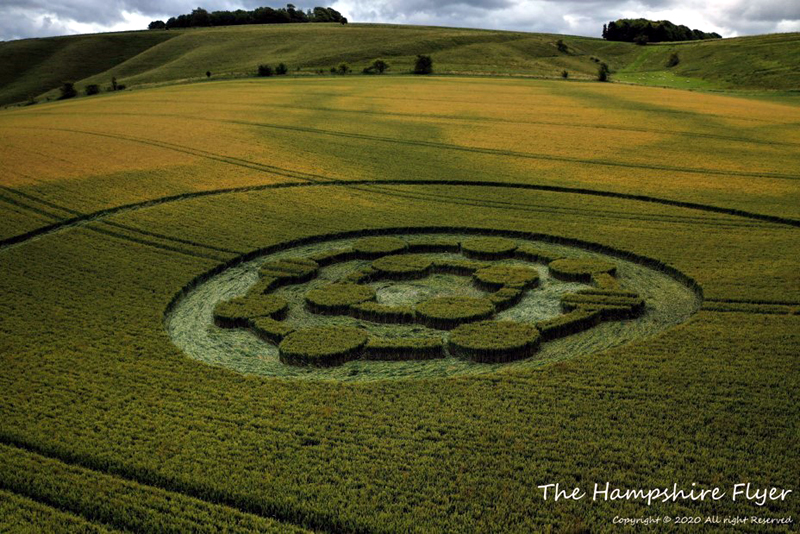 crop circles 2020 - Page 2 Hampshire10072020cc