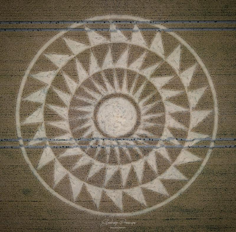 crop circles 2020 - Page 2 DJI_0492