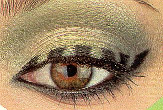 Galleria fotografica make up Vorlageschlangenauge01