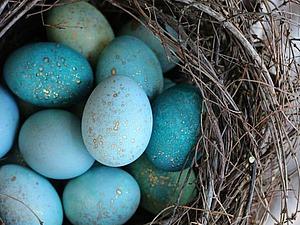 Красим пасхальные яйца 385065