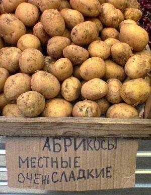Умом Россию не понять X_0e43cc71