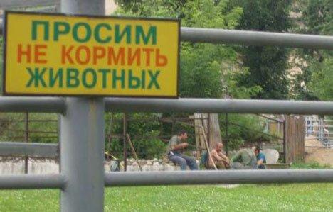 Умом Россию не понять X_818bdb50