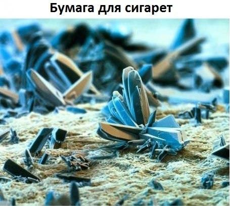 Немного интересного под микроскопом UXRAI2DqTAw