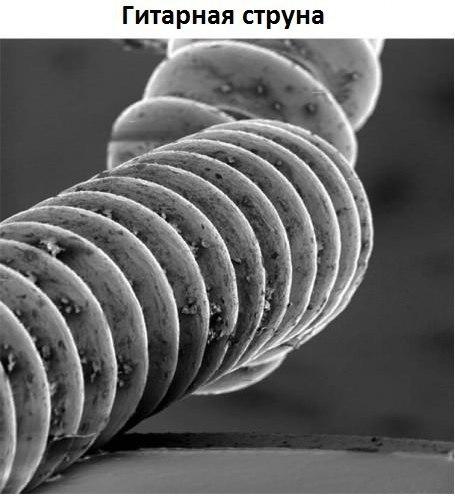 Немного интересного под микроскопом ACMYKa-nNxY