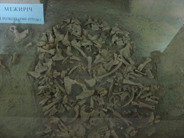 Мои путешествия. Елена Руденко. Киев (Научно-природоведческий музей.  ). 2009г. X_a7aac17e