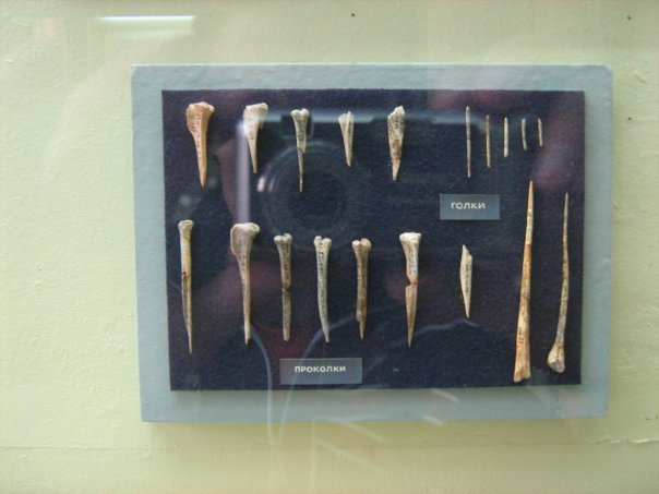 Мои путешествия. Елена Руденко. Киев (Научно-природоведческий музей.  ). 2009г. X_de769241