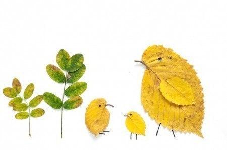 ... Y caen las hojas, llega ....¡¡¡ EL Otoño !!! - Página 8 5RPSdrAe8Hw