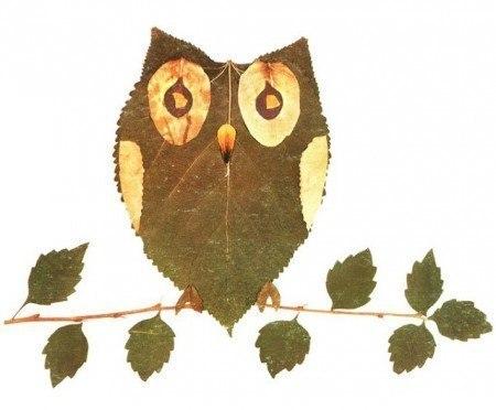 ... Y caen las hojas, llega ....¡¡¡ EL Otoño !!! - Página 8 O6hd3AVyrnc