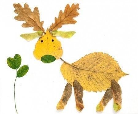 ... Y caen las hojas, llega ....¡¡¡ EL Otoño !!! - Página 8 Q8diKhtAxus