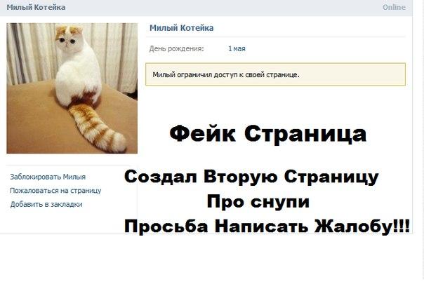 Самый милый кот на свете 4J2lJmHhBiU