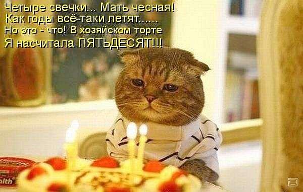 Кошачий юмор - Страница 8 X_b473719c