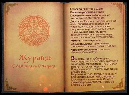 Кельтский гороскоп.. X_35e5e081