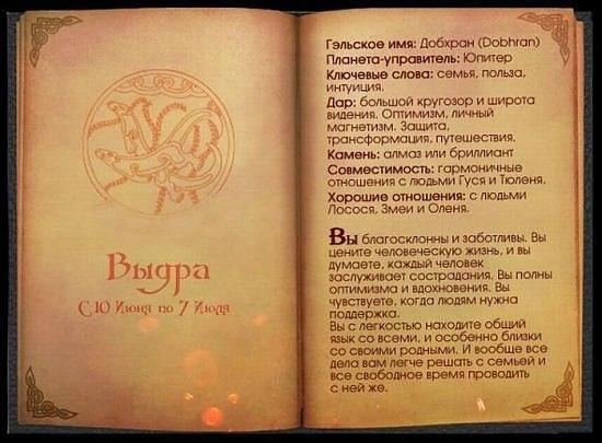 Кельтский гороскоп.. X_94089b63