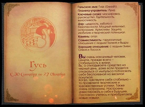 Кельтский гороскоп.. X_a6dd41bc