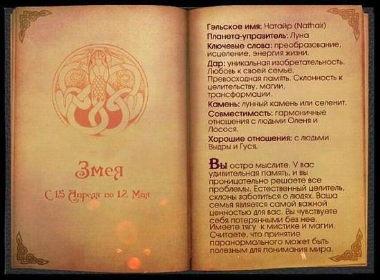 Кельтский гороскоп.. X_e286053e