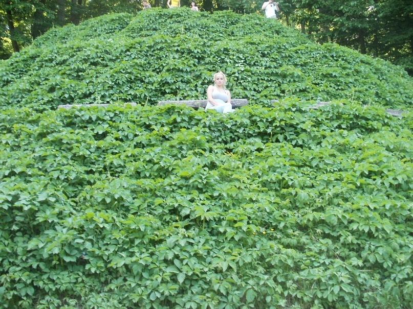 Мои путешествия. Елена Руденко. Украина. Умань. Софиевский парк. 2011 г. Y_efa70026