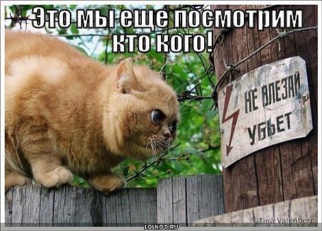 Флудильня - Страница 21 X_4e837d23