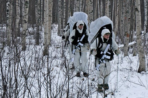 Swedish Armed Forces/Försvarsmakten - Page 8 1C8PaWiGwo8