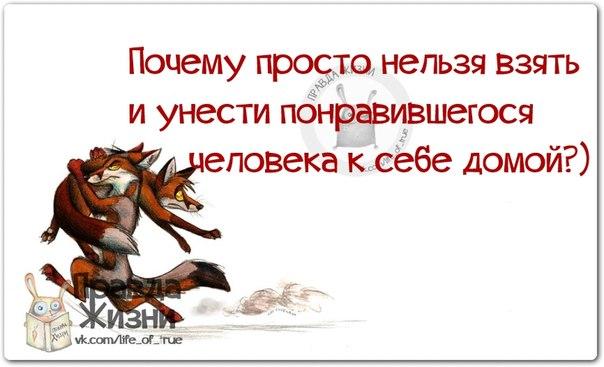 Олег Погудин для некоторых своих поклонниц JL04pWuuc5w