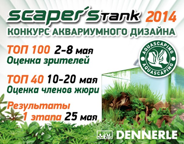 Конкурс аквариумного дизайна DENNERLE Scaper's Tank 2014 W9maxuIknb0