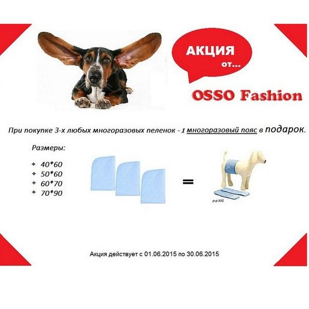 OSSO Fashion - лучшие товары для животных,дрессировки,спорта - Страница 2 KpS7Yyd3Ecg