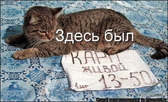 Кошачий юмор SeEtTRshPQM